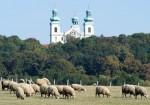 Klasztor kamedułów na Bielanach w Krakowie - fot. Piotr Kędzierski